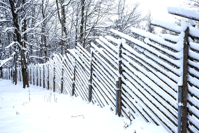 Снег, налипший на забор