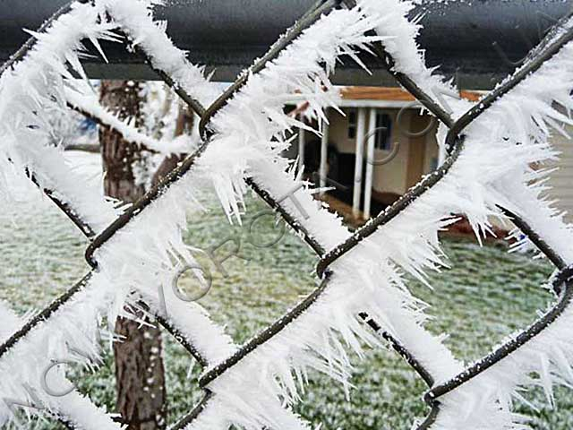 ворота в снегу